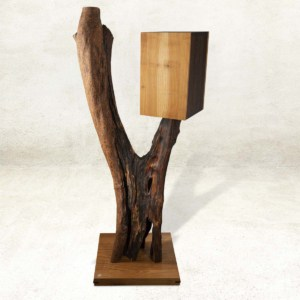 Möbelskulptur aus Olivenbaumstamm