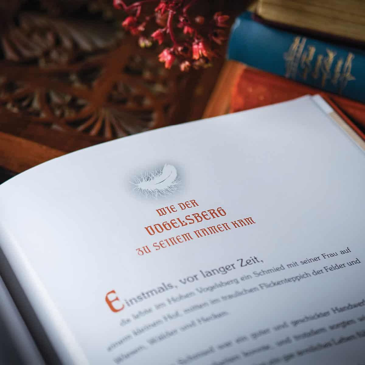 Ausschnitt aus dem Buch